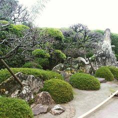 These gardens are so well-manicured. Beautiful! #SouthernJapanVacay #kyushu #chiran #kagoshima