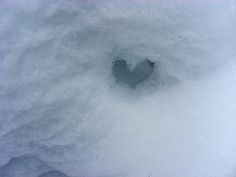 I refuse to be told that I have a cold, cold heart   Flickr - Photo Sharing!