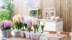 Hyacint als voorbode van de lente Fresco, Decoration Table, Terrazzo, House Plants, Shabby Chic, Garland, Inspiration, Interior Design, Furniture