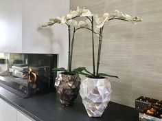 Mother of Pearl by Pot & Vaas Glass Vase, Shells, Pearls, Home Decor, Shelled, Homemade Home Decor, Beads, Interior Design, Seashells