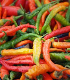 Peperoncini multicolore