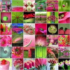 Lime green and pink