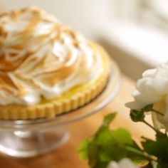 A perfect Mother's Day or Easter Dessert Idea! A perfect Mother's Day or Easter Dessert Idea! A perfect Mother's Day or Easter Dessert Idea! Lemon Desserts, Köstliche Desserts, Delicious Desserts, Dessert Recipes, Tart Recipes, Sweet Recipes, Cooking Recipes, Lemon Meringue Tart, Lemon Tarts