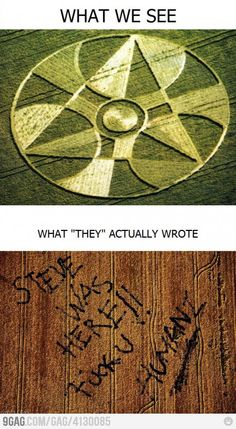 Funny pictures about Truth behind Crop Circles. Oh, and cool pics about Truth behind Crop Circles. Also, Truth behind Crop Circles. Aliens And Ufos, Ancient Aliens, Funny Cute, The Funny, Hilarious, Stupid Funny, Real Crop Circles, Funny Images, Funny Pictures