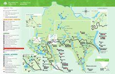 VISITER LE PARC DE LA MAURICIE - Chouette World - Blog voyage Voyage Montreal, Parcs Canada, Charlevoix, Destinations, Parc National, Blog Voyage, Canada Travel, Quebec, Map