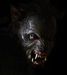 The Alpha Werewolf - Teen Wolf Wiki - Wikia