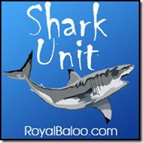 Free Shark Unit for 1-3rd Grades