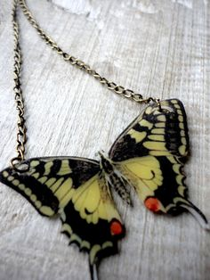 Butterfly necklace! <3