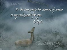 Have a longing to follow God's way and His way only.  Scripture compares such yearning to a deer panting for water.
