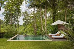 Image detail for -Green Garden Swimming Pool of Como Uma Ubud Resort in Bali Ubud Hotels, Hotels And Resorts, Ubud Resort, Moderne Pools, Infinity Pools, Small Pools, Forest House, Forest Garden, Swimming Pool Designs