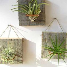Conjunto de tres pequeñas forma aire planta y granero por NiaCraft