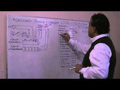 Calculo Total de Potencia y Corriente de una Casa - Parte 2 - YouTube