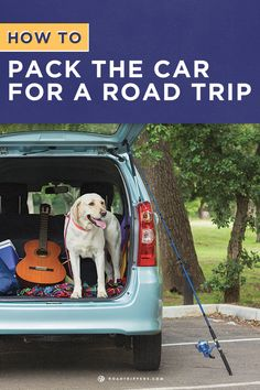 Make room for everything you need on your long road trip!