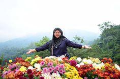 Bunga-bunga matahari �������� Anggun mekar �������� Di taman sari ������ . . . . #flowers #flower #petal #petals #nature #beautiful #love #pretty #plants #blossom #sopretty #spring #summer #flowerstagram #flowersofinstagram #flowerstyles_gf #flowerslovers #flowerporn #botanical #floral #florals #insta_pick_blossom #flowermagic #instablooms #bloom #blooms #botanical #floweroftheday http://gelinshop.com/ipost/1524519791510182235/?code=BUoLqxSBFlb