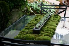 Moss table - Heather Lenkin garden by brewbooks, via Flickr
