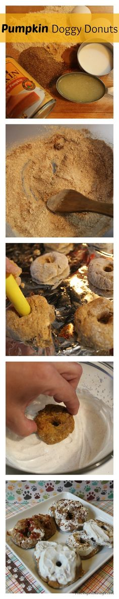 Pumpkin Doggy Donuts. The perfect healthy Fall treat for your pup. #fall #pumpkin #dogs