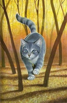 Silverstream, RiverClan, Warrior & Queen, Graystripe's mate, Feathertail's and Stormfur's mother. She is so pretty