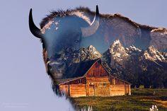 The Essence of Grand Teton National Park. Rondreis USA 2009: Colorado - South Dakota - Wyoming - Utah - Colorado - Orlando