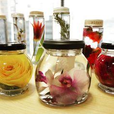 花の標本 ハーバリウム流行ってます 新しいコース[ドリームフラワー]は安全なオイルを使って色が変わらない技術が学べます全2回は9月スタートします #ハーバリウム #花好き集まれ #花 #レカンフラワー #押し花 #名古屋 #薔薇 #グリーンルーム由花 #アトリエ由花