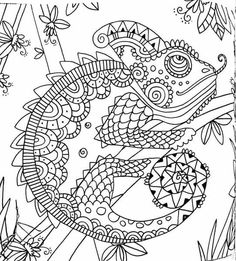 Chameleon On The Tree Coloring Page  Shutterstock 442151002