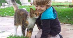 男の子が大好きなネコ!2人の優しい世界にニヤニヤが止まらない   BUZZmag