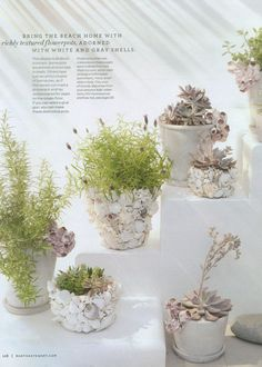 DIY Seashell Pots: Bring the beach home with richly adorned pots with white and gray shells, and barnacles.