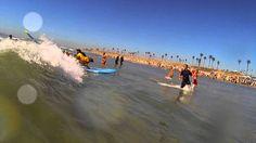 Surf Dog Hanzo