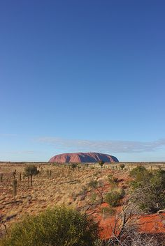 Ayres Rock Uluru Australia