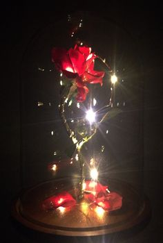 Life Sized Enchanted Magical Rose From Beauty And The Beast Usd By Magicprincesswhitney