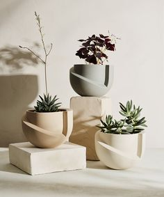 Matte ceramic tabletop planter, fits a 6 inch pot with optional drainage tray. A tabletop version of Light + Ladder's iconic VAYU floor planter. Designed with the concept of volume and void… Ceramic Pottery, Ceramic Art, Ceramic Birds, Ceramic Decor, Ceramic Planters, Planter Pots, Ceramic Flower Pots, Potted Plants, Indoor Plants