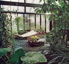 Taking outside inside with transparent walls and looots of plants .. Almost like the botanical gardens .. This is what i want