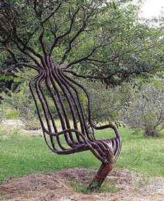 9 Living Tree Sculptures -I wonder how long it would take to shape this tree :)