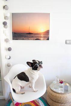 ¡Dale un toque veraniego a tu salón! #verano #decoración