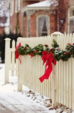 White picket fence looking festive!
