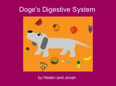 "StoryJumper book - ""Doge's Digestive System"". What happens to food after it is swallowed by a dog?"