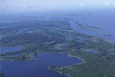 Água Doce - Brasil, a Maior Reserva de Água Doce do Planeta - Portal Vital