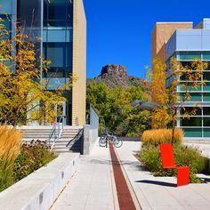 Loving all the vibrant colors seen around campus today #minesfall