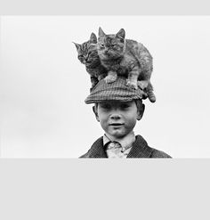 Traveller boy and cats, Ireland, by Alen MacWeeney
