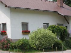 Nossa casa. Garage Doors, Outdoor Decor, Home Decor, Garden, Houses, Photos, Interior Design, Home Interior Design, Home Decoration