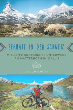 Zermatt im Schweizer Kanton Wallis ist ein Mountainbike-Revier der Extraklasse. Ich verrate Dir die spannendsten MTB Trails und schönsten Bike Touren am Fuße des Matterhorns.   #zermatt #matterhorn #mtb #mountainbike #wallis #schweiz #biken #wandern  Zermatt Schweiz | Zermatt Matterhorn | Schweiz Reise | Schweiz Wandern | Schweiz Mountainbike | Biken Schweiz | Bike Touren Schweiz | Schweiz MTB| Wallis Schweiz | MTB Schweiz | Mountainbike Schweiz | Matterhorn Zermatt Reisen In Europa, Zermatt, Wonderful Places, Europe, Outdoor, Mountains, Nature, Travel, Camping