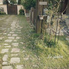 女性で、4LDKの枕木門柱/プロヴァンスに憧れて…/アンティークレンガ/手作りの庭/しゃれとんしゃあ会…などについてのインテリア実例を紹介。「裏庭と玄関への分かれ道。アンティークレンガの間から、ヒメイワダレソウがいっぱい咲いてる姿が好きです *.⋆( ˘̴͈́ ॢ꒵ॢ ˘̴͈̀ )⋆.*」(この写真は 2014-06-19 19:47:09 に共有されました)