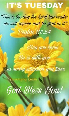 It's Tuesday, God Bless You! tuesday tuesday quotes tuesday images its tuesday tuesday image quotes Tuesday Quotes Good Morning, Happy Tuesday Quotes, Thursday Quotes, Good Morning Happy, Morning Greetings Quotes, Morning Qoutes, Morning Blessings, Morning Prayers, Drake