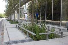 stormwater planter with metal railings around perimeter -which could also act as seats or bike racks