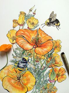 Bee On Poppy Flower Drawing Bee On Poppy Flower Drawing. Bee On Poppy Flower Drawing. A Not Quite Finished Poppy and Bees Collage and Oil in poppy flower drawing Bee On Poppy Flower Drawing Noel Badges Pugh Poppies Keep Growing Art Floral, Illustration Botanique, Illustration Art, Inspiration Art, Art Inspo, Watercolor Flowers, Watercolor Art, Colossal Art, Bee Art