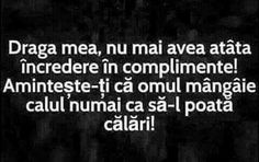 Omul mangaie calul doar ca sa-l calareasca. Work Sarcasm, Sarcasm Meme, Sad Words, True Words, Gangster Quotes, Love Quotes, Funny Quotes, Quotations, Qoutes