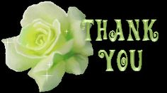 Thank You With White Rose