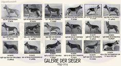 GSD Galerie Der Sieger 1925 - 1951