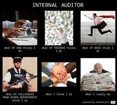 Internal Audit Meme Internal auditor : meme 7
