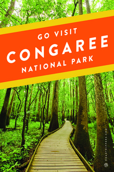 This swampy old growth former national monument gained the prestigious national park designation in 2003 and has since attracted visitors far and wide to its unparalleled ecosystem.