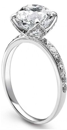 """Delphine"" platinum ring with solitaire diamond and pavé diamonds by Fred"